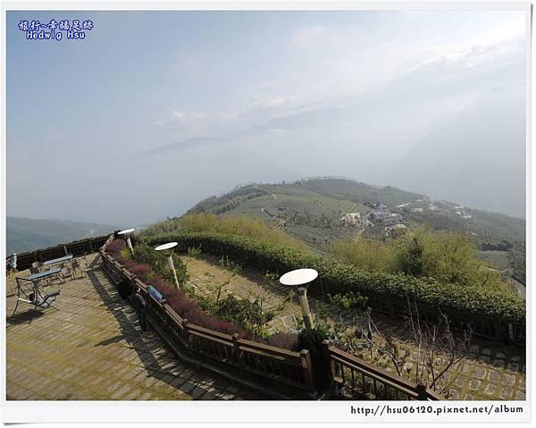 10碧湖山觀光茶園 (25)-19