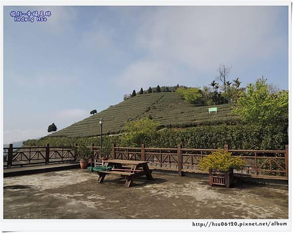 10碧湖山觀光茶園 (29)-23