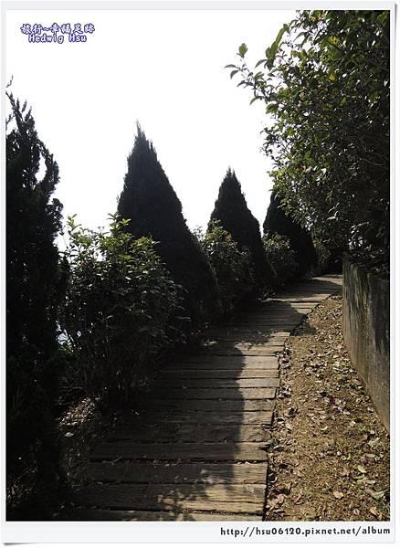10碧湖山觀光茶園 (34)-5