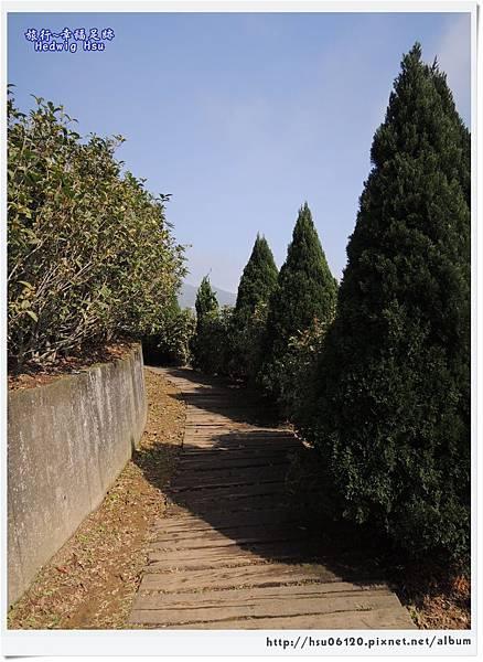 10碧湖山觀光茶園 (41)-7