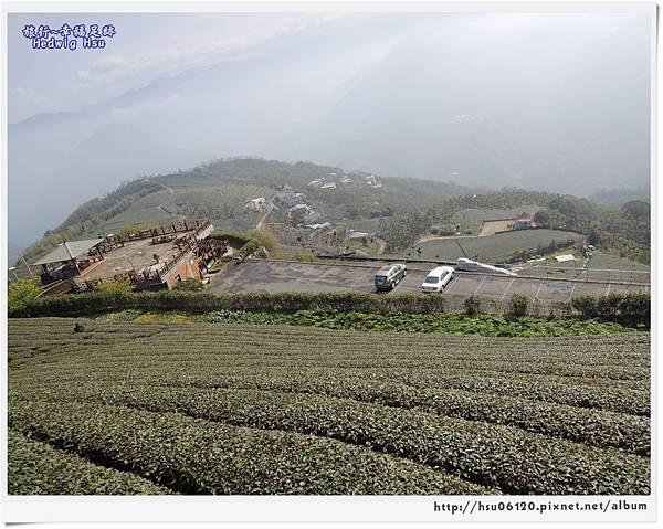 10碧湖山觀光茶園 (40)-27