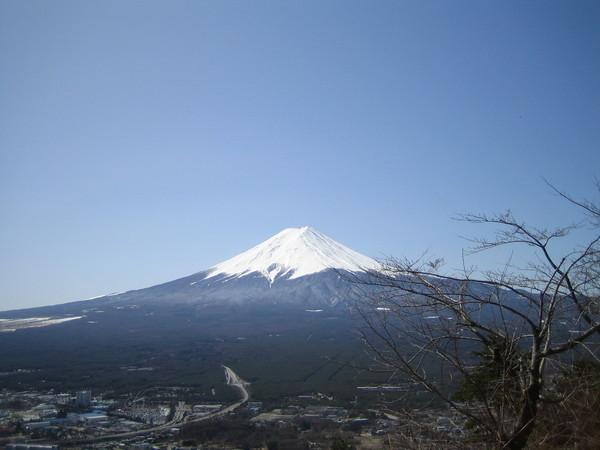 富士山~ 來朝聖
