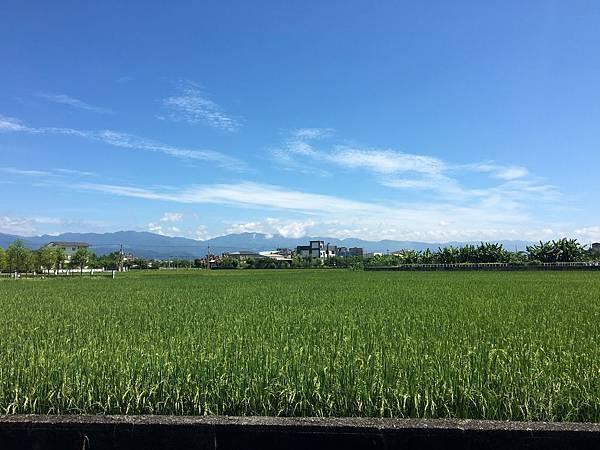 東部的天空好藍