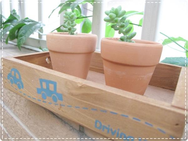 木製盒子.JPG