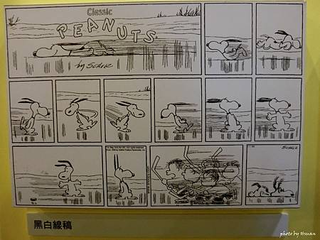 Snoopy-10.jpg