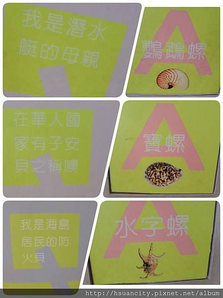 貝殼博物館 (10).jpg