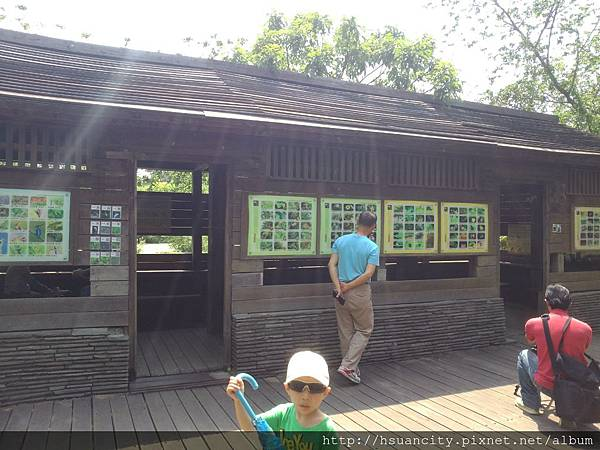 鳥松濕地公園5