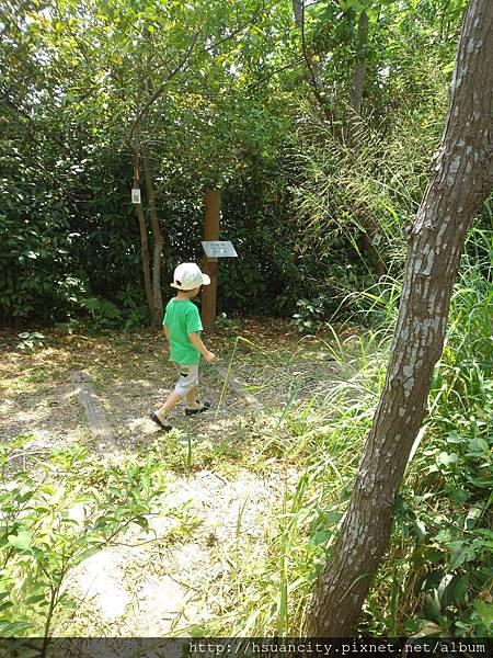 鳥松濕地公園18