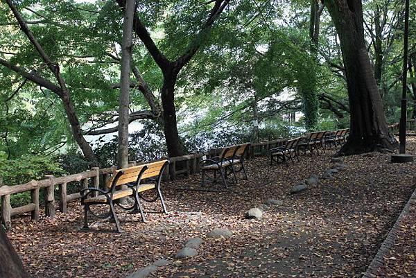湖邊的長椅  在這發呆都舒服