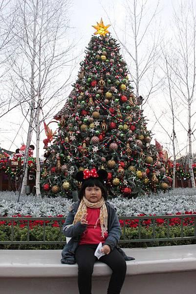 好豐富的聖誕樹