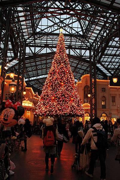 下午五點 聖誕樹燈亮了