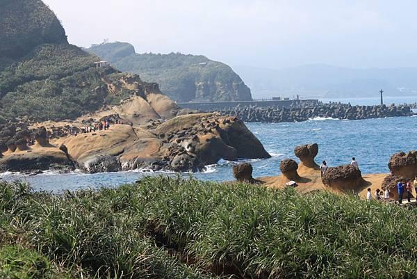 """對岸的石頭叫""""海牛與大象"""""""