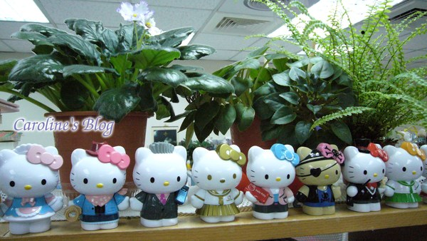 辦公室的植物們.jpg