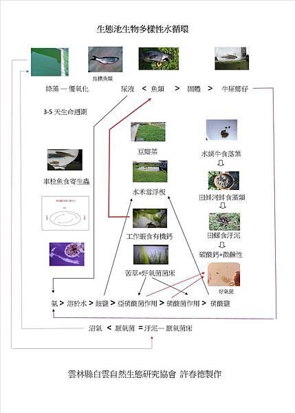 水循環_20190126.jpg