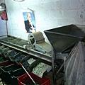 篩選橄欖的機器
