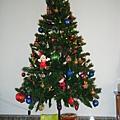 我的聖誕樹