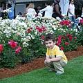 在草皮上玩耍的小外甥