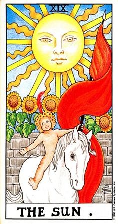 1118-5