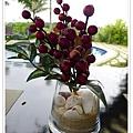 桌上的盆栽