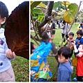 1115大安森林公園3.jpg