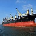船遊高雄港18