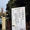 東京自由行60
