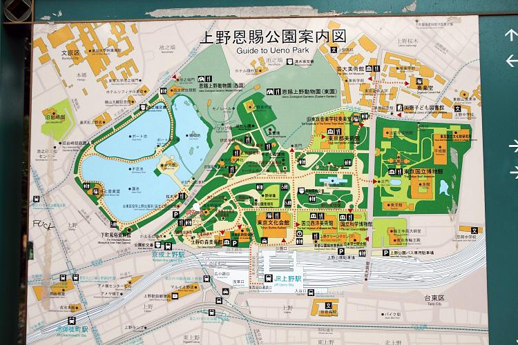 東京自由行232