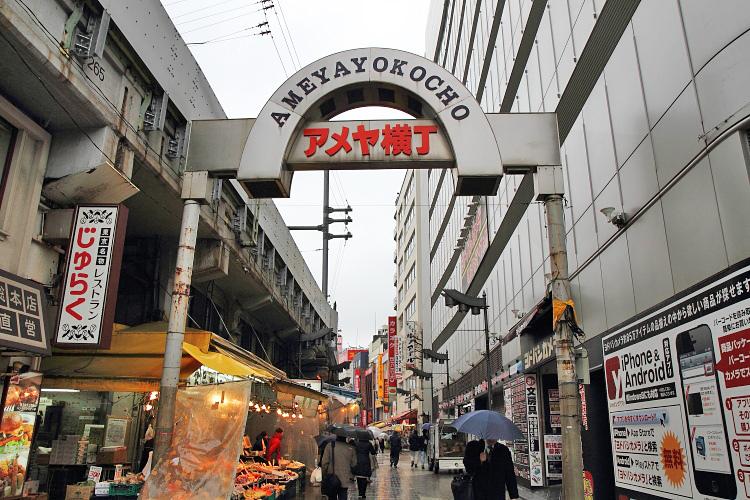 東京自由行244