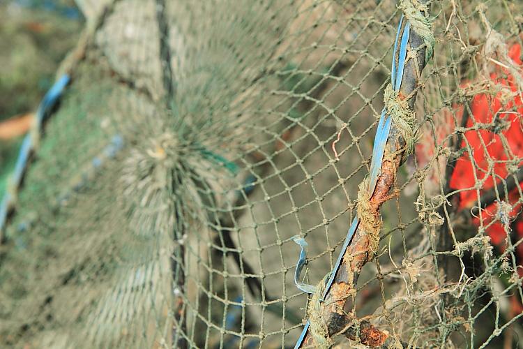 淡水漁人碼頭8