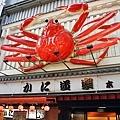 2015日本關西遊前言8.JPG