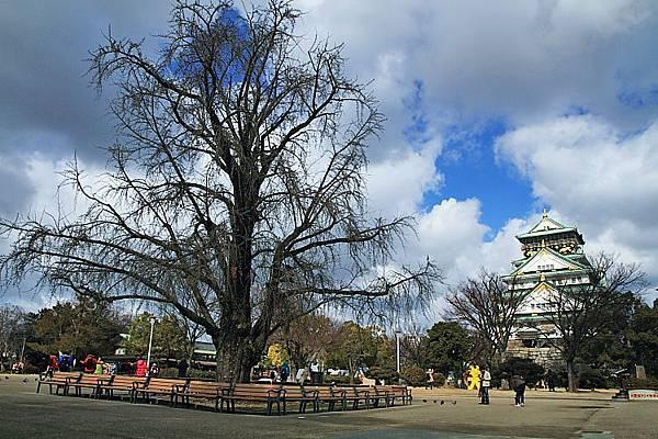 2015日本關西遊210