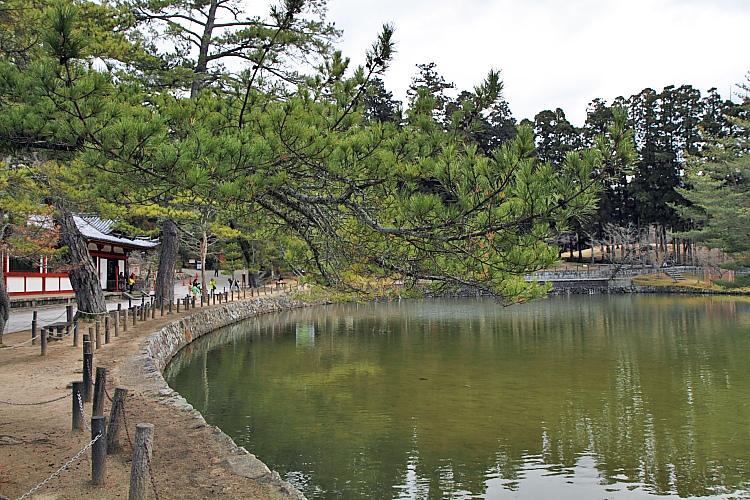 2015日本關西遊411