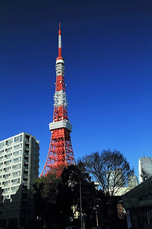 東京輕井澤2