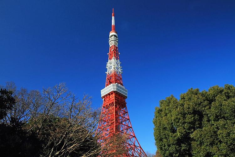 東京輕井澤3