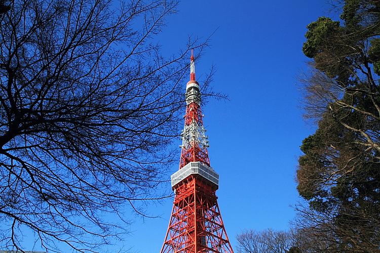 東京輕井澤5