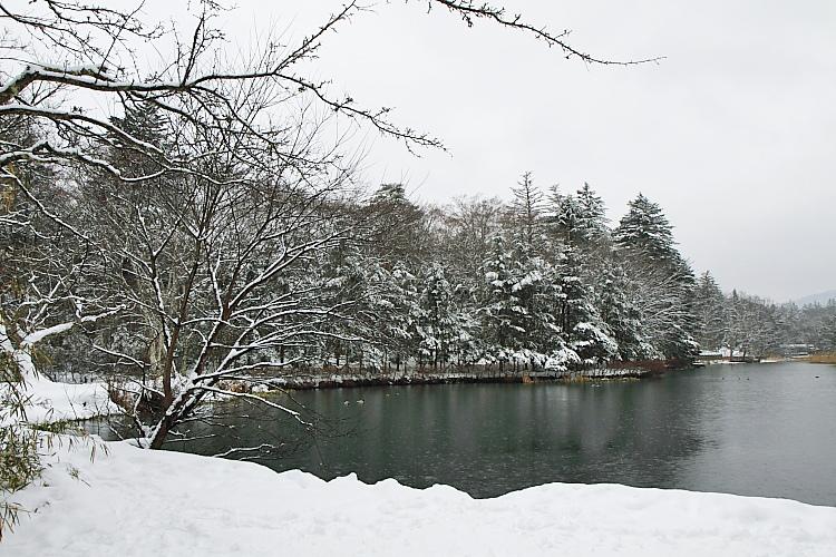 東京輕井澤155
