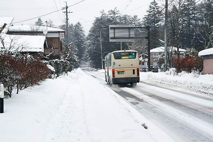 東京輕井澤166