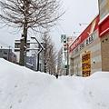 2017冬之北海道a15.JPG