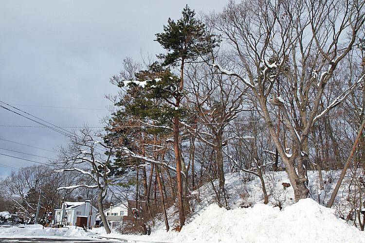 2017冬之北海道2