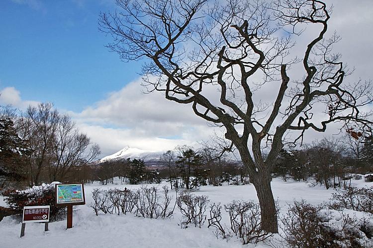 2017冬之北海道9