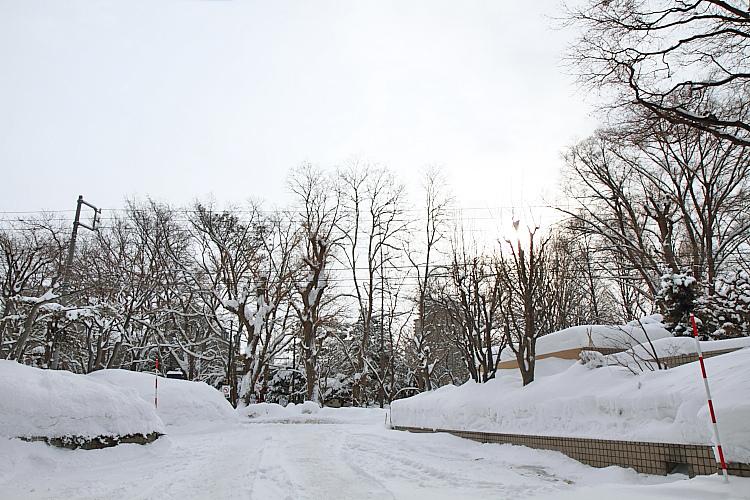 2017冬之北海道86