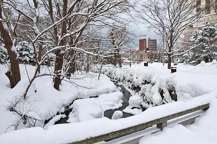 2017冬之北海道93