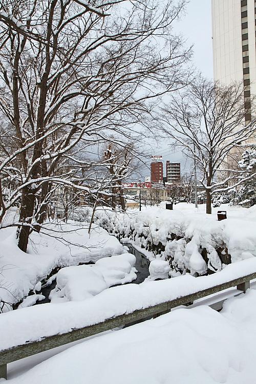 2017冬之北海道94