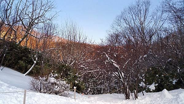 2017冬之北海道113