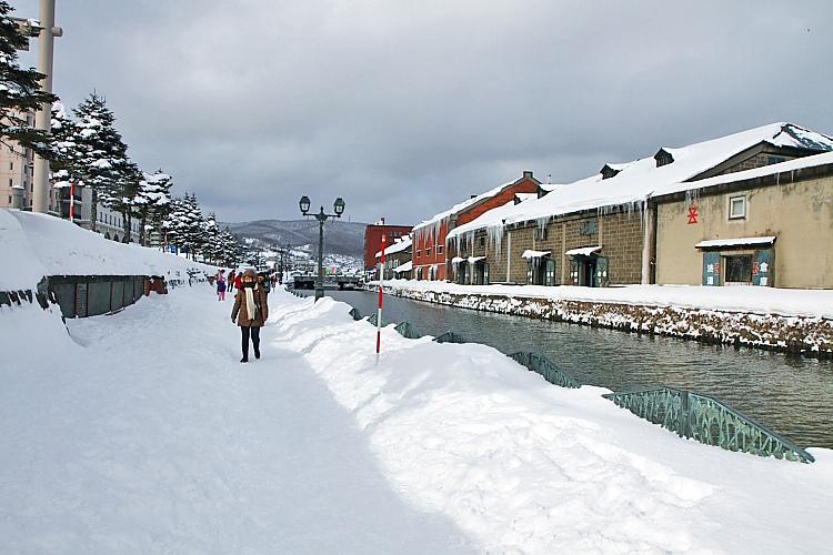 2017冬之北海道141