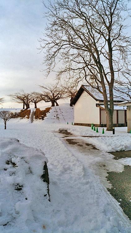 2017冬之北海道196