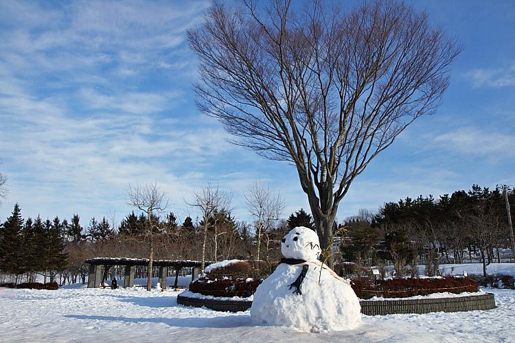 2017冬之北海道226