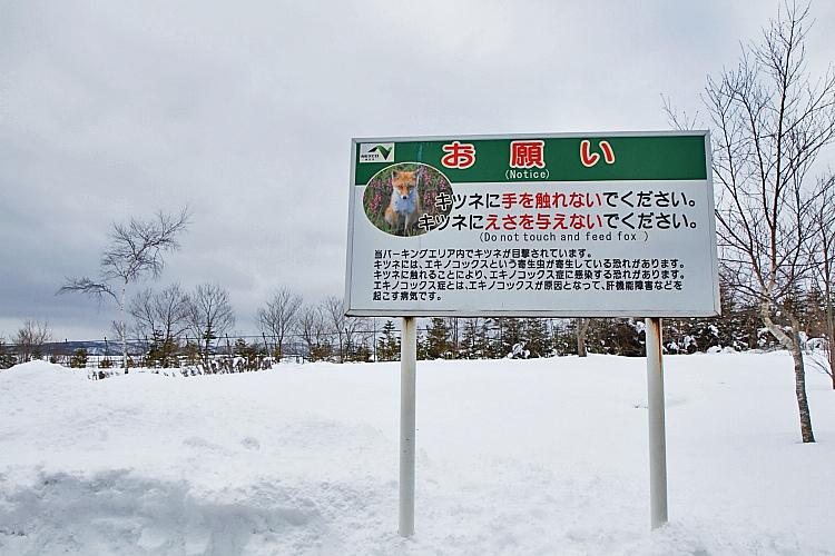2017冬之北海道314