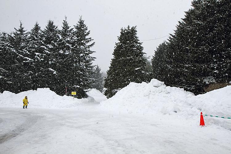 2017冬之北海道359