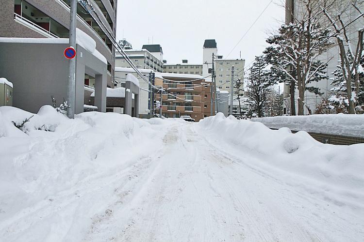 2017冬之北海道441